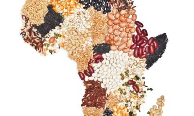 Agri-Tech Will Change The Future - Amrote Abdella