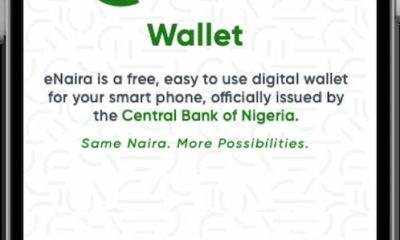 Nigeria's eNaira Website Goes Live, Records One Million Hits In 24Hrs