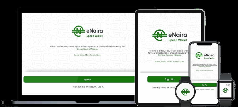 Court Okays Nigeria's Digital Currency, eNaira Launch As Company Sues CBN